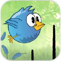 一只小小鸟